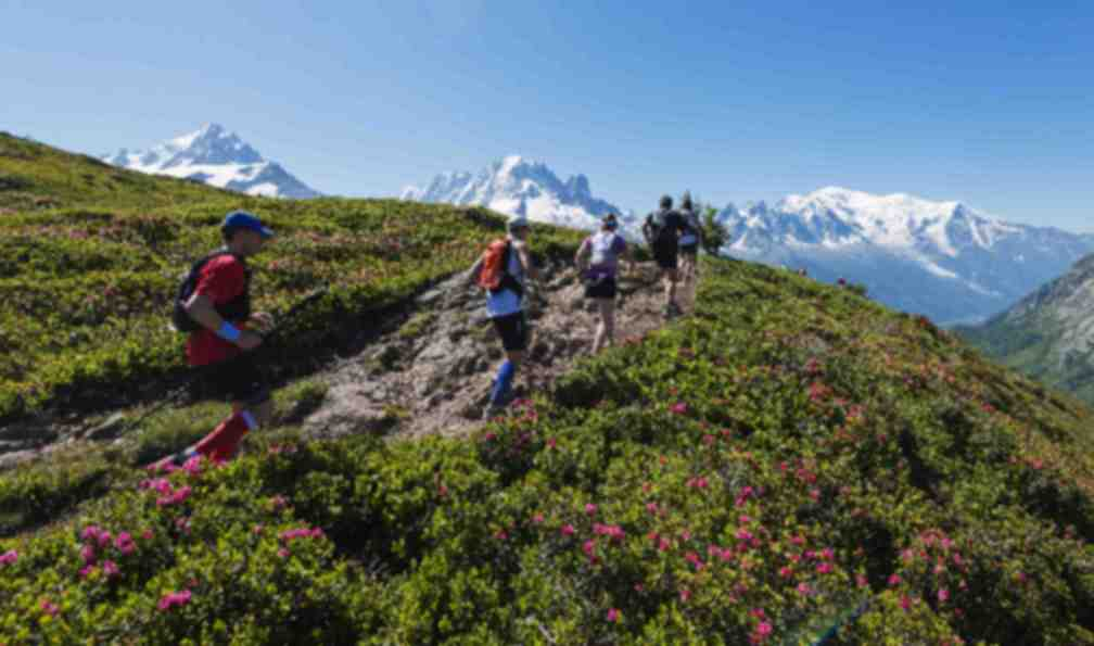 french-alps-tour-du-mont-blanc-trail-running